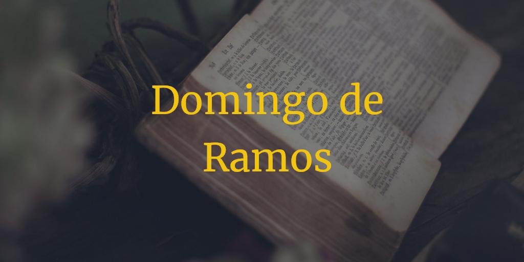Horarios e Itinerarios Domingo de Ramos Semana Santa Sevilla